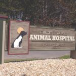 veterinarian sign